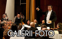 Galerii FOTO